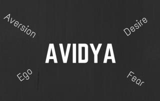 AVIDYA